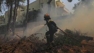 Φωτιά στη Σταμάτα: Ποινική δίωξη στον 64χρονο μελισσοκόμο για εμπρησμό από αμέλεια