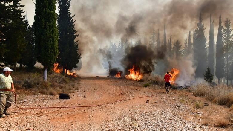 Φωτιά - Αχαΐα: Στο νοσοκομείο δύο πυροσβέστες και δύο πολίτες - Σε συναγερμό το ΕΚΑΒ