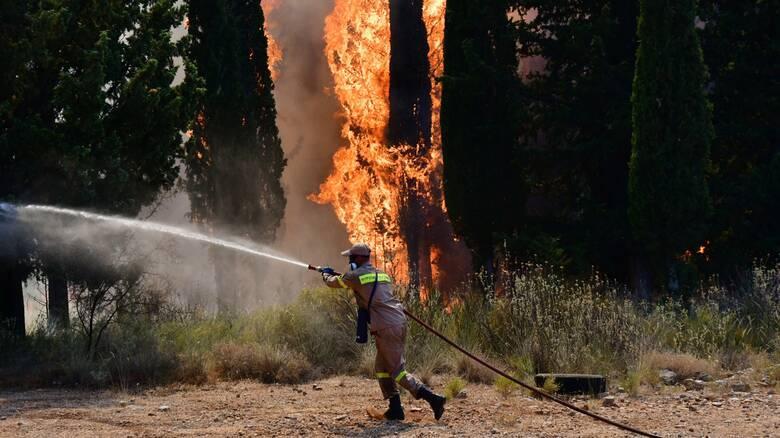 Φωτιές στην Αχαΐα: Σε μέγιστη ετοιμότητα οι υγειονομικές δομές και το ΕΚΑΒ με εντολή Κικίλια