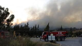 Τουρκία: Δασική πυρκαγιά απειλεί κατοικημένες περιοχές - Τρεις τραυματίες και καμμένα σπίτια