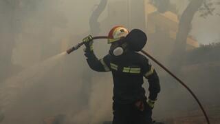 Φωτιά στην Πάτρα: Νέα εστία στην περιοχή του Προφήτη Ηλία - Εκκενώνονται σπίτια