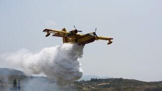 Σε ύφεση η φωτιά στη Δροσιά, οριοθετήθηκε στον Προφήτη Ηλία - 48 πυρκαγιές σε ένα 24ωρο