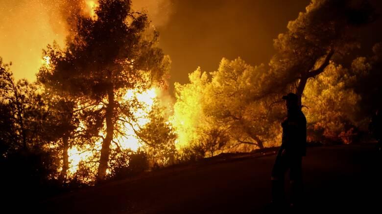 Βόνιτσα: Δύσκολη μάχη με τις φλόγες - Εκκενώθηκε προληπτικά ο οικισμός Δρυμός