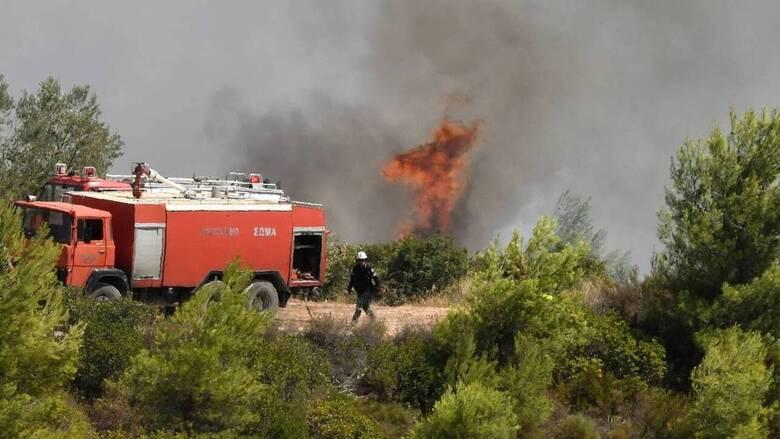 Φωτιά στη Βόνιτσα: Συνεχίζεται η «μάχη» με τις φλόγες