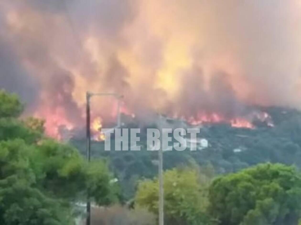 Φωτιά στη Ζήρια Αχαΐας: Εκκενώνονται προληπτικά τέσσερα χωριά - CNN.gr