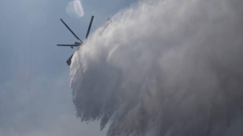 Φωτιά σε εξέλιξη στον Αλμυρό Βόλου: Επί ποδός η Πυροσβεστική