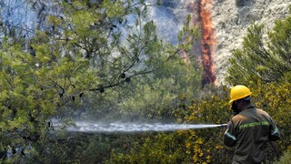 Φωτιά στην Ερμιονίδα Αργολίδας: Επιχειρούν επίγειες και εναέριες δυνάμεις
