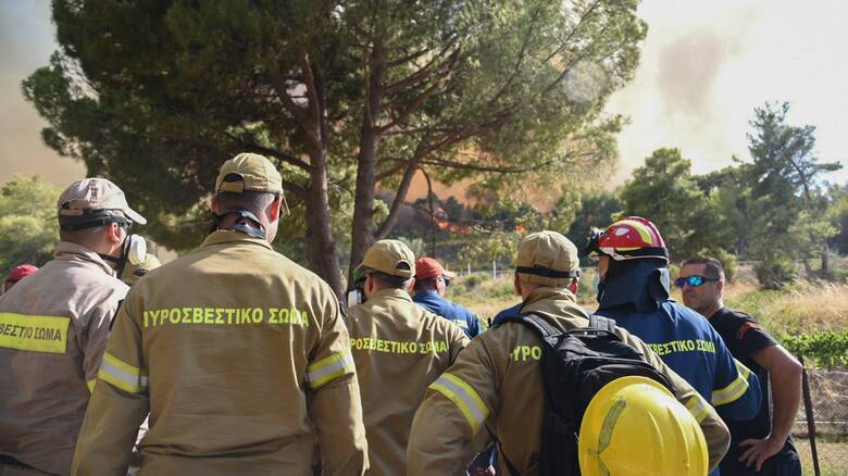 Φωτιά στην Αχαΐα: Στα πύρινα μέτωπα ο Νίκος Χαρδαλιάς