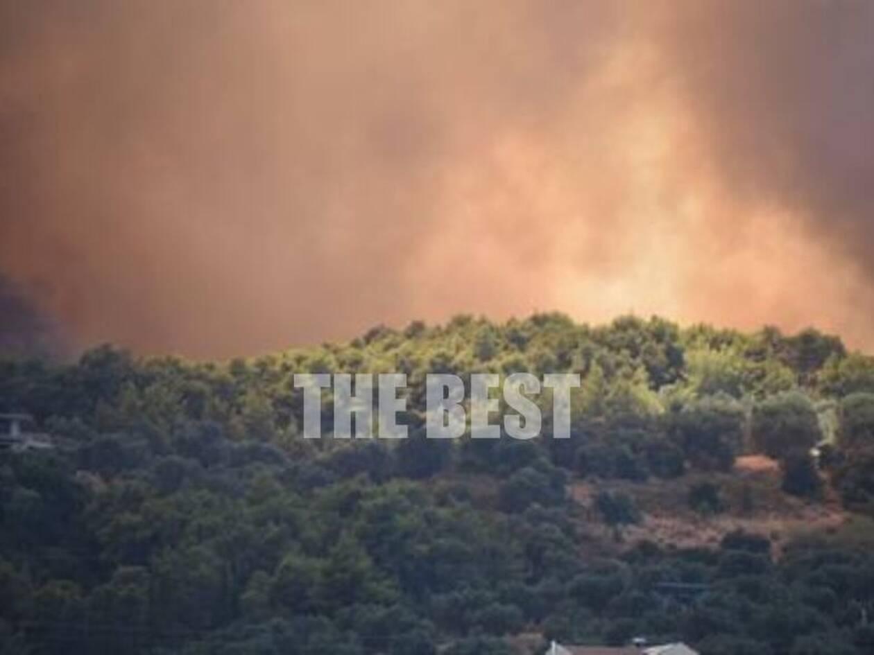 https://cdn.cnngreece.gr/media/news/2021/07/31/276330/photos/snapshot/ziria-10.jpg