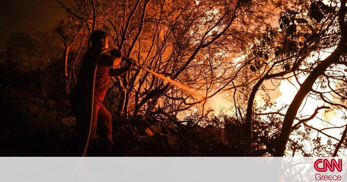 Τουρκία: Έξι νεκροί από τις δασικές πυρκαγιές – Απειλούν την Αλικαρνασσό οι φλόγες