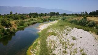 Τρίκαλα: «SOS» εκπέμπει ο Πηνείος ποταμός - Μειώθηκε σημαντικά η στάθμη