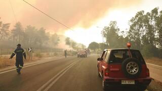 Φωτιά στην Αχαΐα - Χρυσοχοΐδης: Δύσκολη η μάχη - Είμαστε σε πλήρη κινητοποίηση