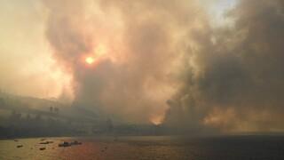 Στις φλόγες η Αχαΐα: Τραυματίες και καμμένα σπίτια -  Ολονύχτια μάχη στα πύρινα μέτωπα