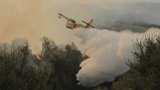 Φωτιά στην Αχαΐα: Μαίνεται το πύρινο μέτωπο - 16 τραυματίες, «στάχτη» 20 σπίτια