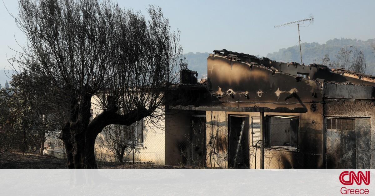 Χρυσοχοΐδης για φωτιά στην Αχαΐα: Κατορθώσαμε να μην λάβει μεγαλύτερες διαστάσεις
