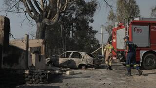 ΓΓ Πολιτικής Προστασίας για τη φωτιά στην Αχαΐα: Η κινητοποίηση του κρατικού μηχανισμού ήταν άμεση