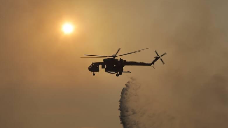 ΚΙΝΑΛ για πυρκαγιά στην Αχαΐα: Αποδείχθηκε η ανικανότητα του επιτελικού κράτους