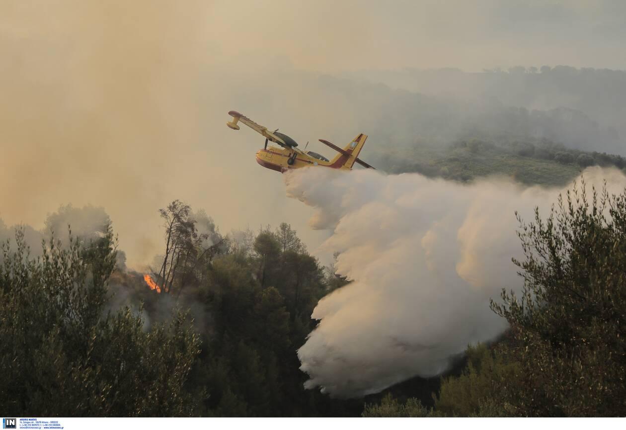 https://cdn.cnngreece.gr/media/news/2021/08/01/276397/photos/snapshot/ziria-5.jpg