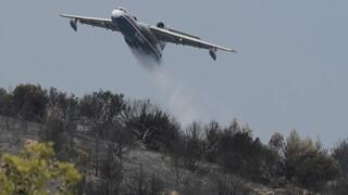 Φωτιά Αχαΐα: Καλύτερη η εικόνα στη Ζήρια - Συνεχίζεται η μάχη της Πυροσβεστικής