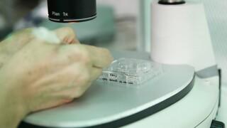 Κορωνοϊός - Καθηγητές Ιατρικής ΕΚΠΑ: Τα εμβόλιαmRNAδεν επηρεάζουν το σπέρμα
