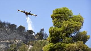 Έβρος: Απαγόρευση κυκλοφορίας σε δάση τη Δευτέρα για την πρόληψη πυρκαγιών