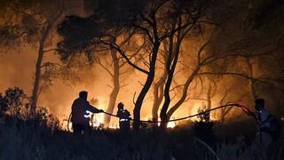 Στις φλόγες η Ρόδος: Εκκενώθηκαν οικισμοί - Σταδιακή αποκατάσταση ρεύματος