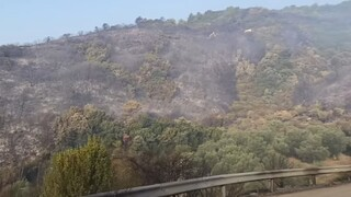 Φωτιά στην Αιτωλοακαρνανία: Χωρίς ρεύμα τρεις οικισμοί, εικόνες καταστροφής