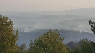 Φωτιά στη Ρόδο: Αίτημα να κηρυχθούν σε κατάσταση έκτακτης ανάγκης 7 δημοτικές ενότητες