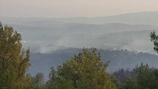 Φωτιά στη Ρόδο: Σε ύφεση όλα τα μέτωπα - Στάχτη 7.000 στρέμματα