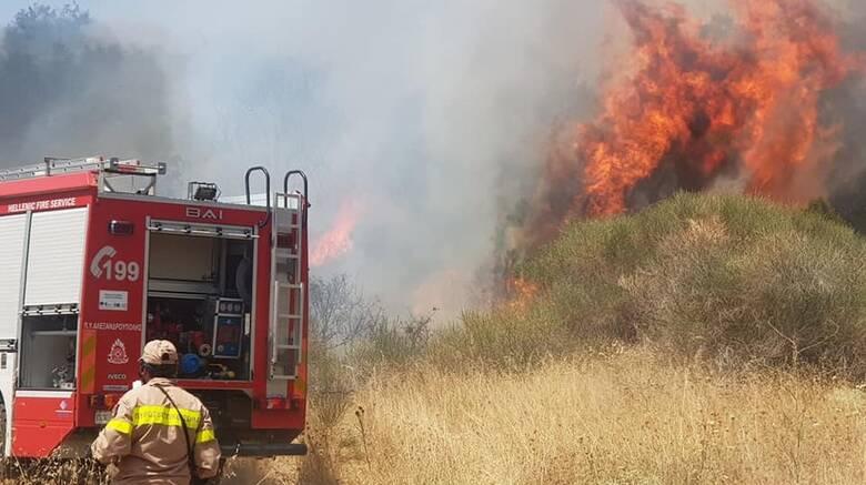 Φωτιά στον Έβρο: Σε ύφεση το μέτωπο στο Σουφλί - Καλύτερη η εικόνα στα Λαγυνά