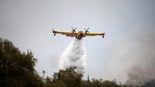 Φωτιά - Φθιώτιδα: Σε εξέλιξη δύο πύρινα μέτωπα σε Σπερχειάδα και Στυλίδα