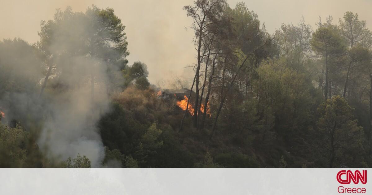 Καλαμάτα: Φωτιά στην περιοχή Βασιλίτσι – Εντολή για προληπτική εκκένωση της κοινότητας