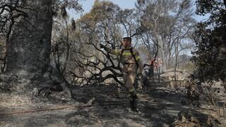 Φωτιά στη Ρόδο: Σε κατάσταση έκτακτης ανάγκης οι δημοτικές ενότητες Πεταλούδων και Καλλιθέας