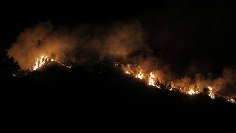 Φωτιά Φθιώτιδα: Δύσκολη νύχτα στη Στυλίδα - Μάχη με τις αναζωπυρώσεις δίνουν οι πυροσβέστες