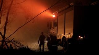 Καλαμάτα: Σε εξέλιξη η φωτιά στην περιοχή Βασιλίτσι - Καλύτερη η εικόνα