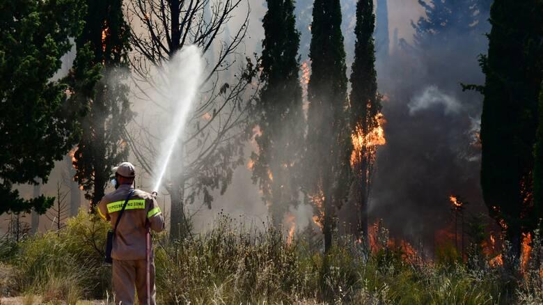 Συνεχίζεται η «μάχη» με τις φλόγες σε Φθιώτιδα και Ρόδο