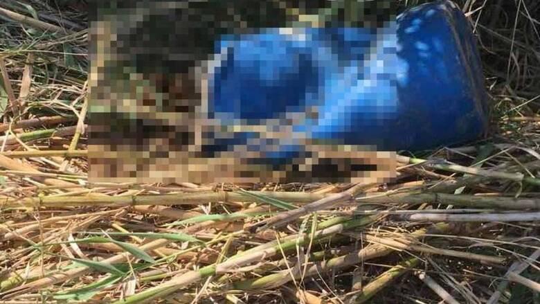 Κρήτη: Θρίλερ με το πτώμα στο βαρέλι - Ενισχύεται το σενάριο αυτοκτονίας