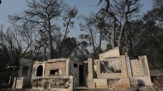 Φωτιά στην Αχαΐα: Τα μέτρα ανακούφισης των πληγέντων ανακοίνωσε ο Πέτσας