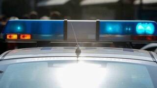 Κιλκίς: 70χρονος κατηγορείται ότι πυροβόλησε και σκότωσε αδέσποτο σκύλο