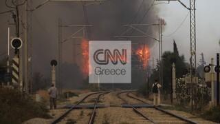 Φωτιά Βαρυμπόμπη - ΑΔΜΗΕ: Σε κίνδυνο η τροφοδοσία της Ανατολικής Αττικής λόγω των πύρινων μετώπων