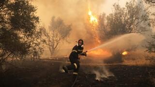 Ακραίος κίνδυνος πυρκαγιάς την Τετάρτη - Συναγερμός σε Πυροσβεστική και Πολιτική Προστασία
