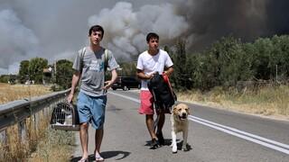 Πυρκαγιά Βαρυμπόμπη: Οδηγίες από την Ένωση Πνευμονολόγων προς τους πολίτες