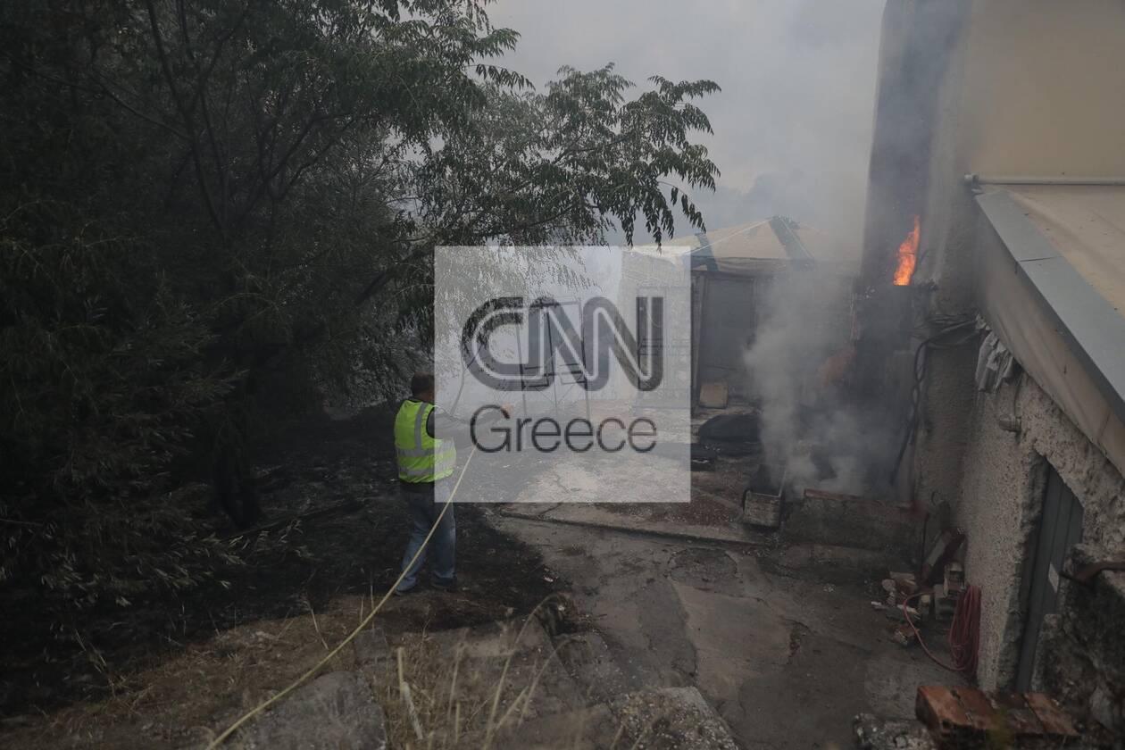 https://cdn.cnngreece.gr/media/news/2021/08/03/276680/photos/snapshot/61099e14f28c1.jpg