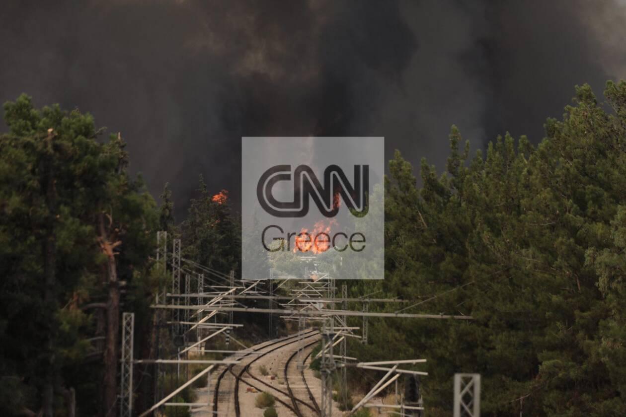 https://cdn.cnngreece.gr/media/news/2021/08/03/276680/photos/snapshot/dekeleia6.jpg