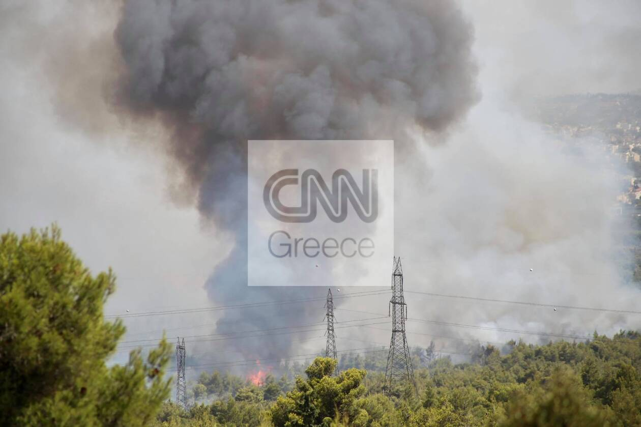https://cdn.cnngreece.gr/media/news/2021/08/03/276680/photos/snapshot/fotia3.jpg