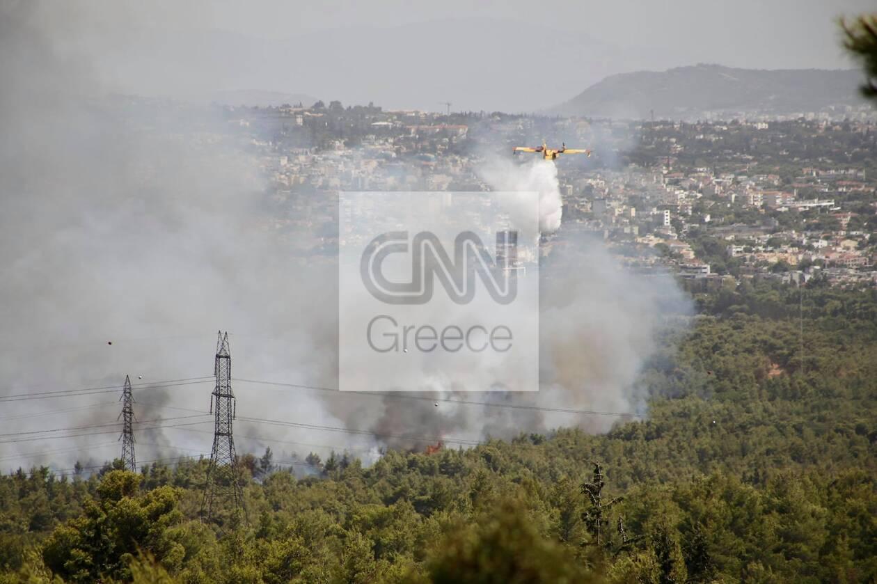https://cdn.cnngreece.gr/media/news/2021/08/03/276680/photos/snapshot/fotia5.jpg