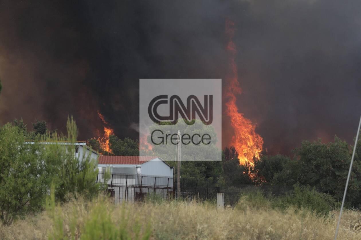 https://cdn.cnngreece.gr/media/news/2021/08/03/276680/photos/snapshot/purkagia10.jpg
