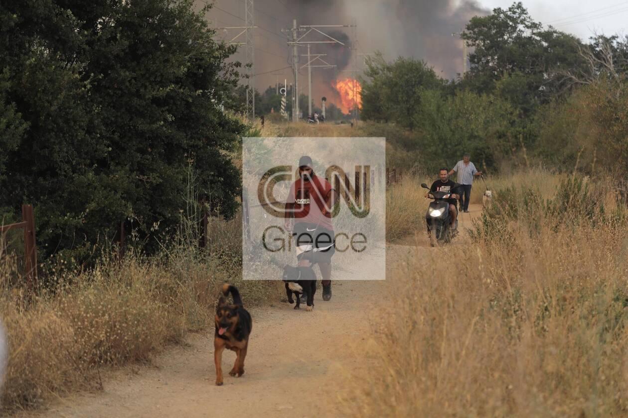https://cdn.cnngreece.gr/media/news/2021/08/03/276680/photos/snapshot/purkagia9.jpg