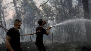 Λίμνη Εύβοιας: Στην θάλασσα σταμάτησαν οι φλόγες - Μαίνονται τρία μεγάλα μέτωπα