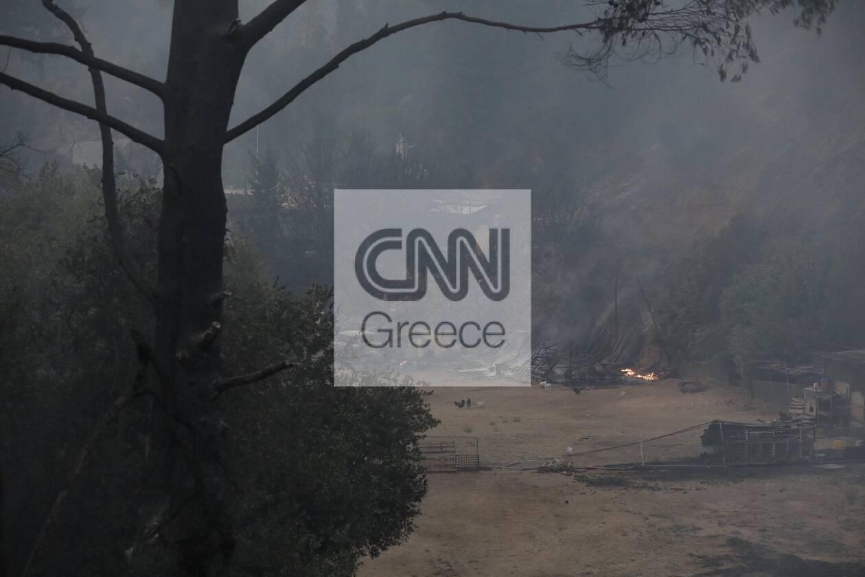 https://cdn.cnngreece.gr/media/news/2021/08/04/276710/photos/snapshot/610a1969a08a6.jpg